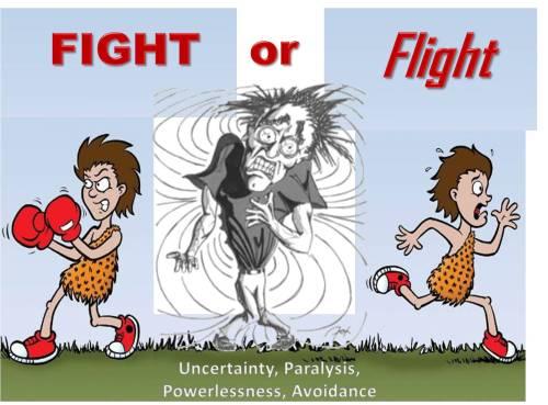 Fight Or Flight Uncertainty